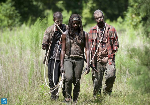 409_michonne_pet_walkers-the-walking-dead-michonne-decides-rick-and-carl-unite